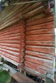 """Tømmeret er veldig jamnt rundtømmer som måler 6 ½"""" - 7"""" i snitt i diameter og som er fint pjåla. Novene er femkanthals med djupe kinningar. Foto: Roald Renmælmo"""