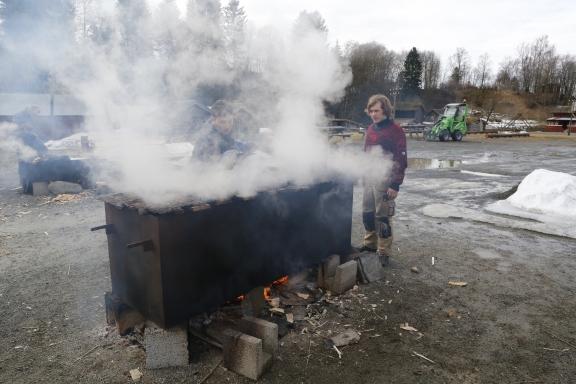 Sponskiene ble kokt i minst 2 timer. Foto: Roald Renmælmo