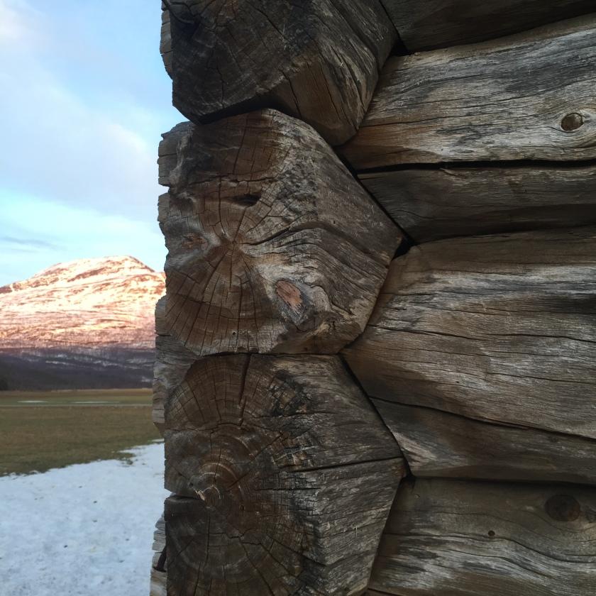 Figur 2. Nærbilde av noven på Renmælmo-stabburet. Foto: Henrik Jenssen.