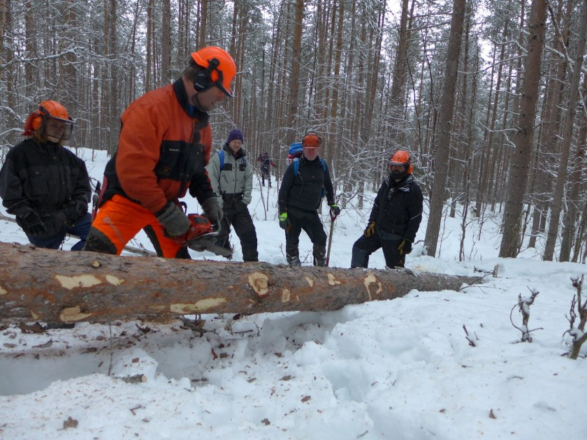 Skogbruksinstruktør Knut Johnsen demonstrerer kvisteteknikk med motorsag. Foto: Siv Holmin