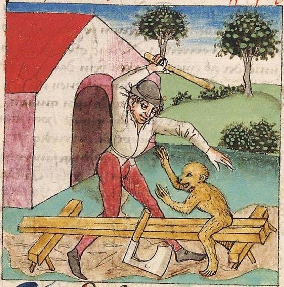 ape kløyv 2.jpg